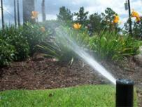an arc head allows you to focus irrigation over a small area of your planting bed